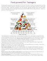 44840 food pyramid