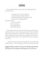 bài thơ sóng  một trong những bài thơ hay của Xuân Quỳnh