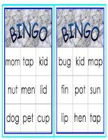 28827 cvc words bingo