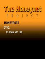 The honeynet project honeypots