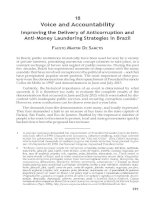 Voice and Accountability Improving the Delivery of Anticorruption and Anti–Money Laundering Strategies in Brazil