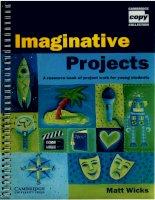 Imaginative projects