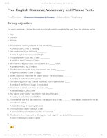 Strong adjectives   free english grammar, vocabulary and phrase tests