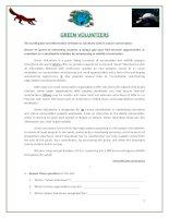 15588 green volunteers  environment