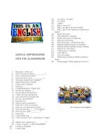 60273 useful expressions