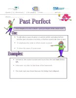 2927 past perfect tense