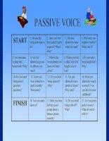 777 passie voice boardgame