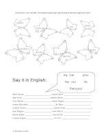 4301 possessive pronouns