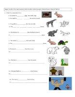comparatives (english)