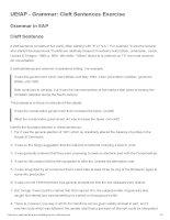 UEfAP   grammar  cleft sentences exercise