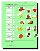 3626 vocabulary matching worksheet  fruit