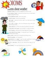 30111 idioms about weather