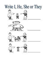 30046 personal pronouns i she he and they