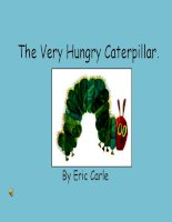The very hungry caterpillar power point21