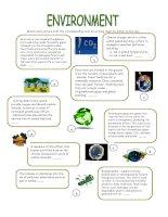 40543 environment  vocabulary study