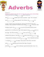 8801 the adverbs 1