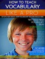How to teach vocabulary like a pro