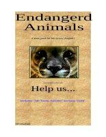 693 endangered animals webquest