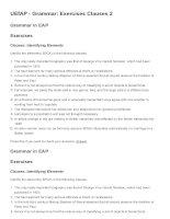 UEfAP   grammar  exercises clauses 2