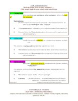 33718 cpr  paragraph  and essay  structure