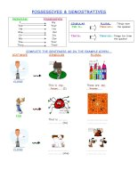 14369 possessive pronouns and demonstratives