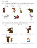 9216 animlals and place prepositions