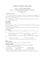 Giáo án Tiếng Anh 9 unit 6: The environment