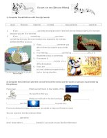 islcollective worksheets preintermediate a2 intermediate b1 elementary school high school listening conditional i first  149545040855cca8541c72f2 28614400
