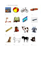 34785 have got classroom objects toys pets