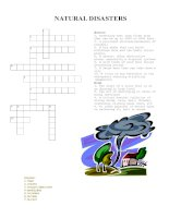 33164 crossword puzzle natural disasters