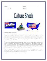 26681 reading culture shock