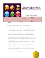 7151 words describing facial expressions