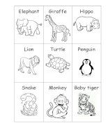 49882 zoo animals  big or small