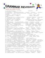 15113 grammar revision