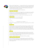 35290 brain breakers