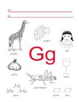 50386 alphabet letter g