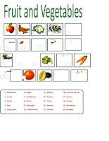 12947 fruit  vegetables