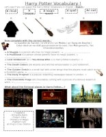 67818 harry potter project  vocabulary ws 3