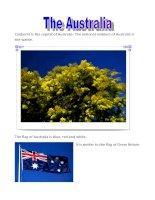 4058 the australia (1)
