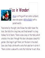 14377 alice in wonderland (1)