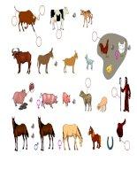 3241 domestic animals