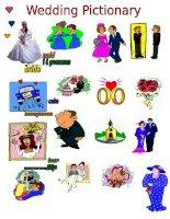 34620 wedding pictionary