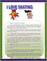 24183 i love skating