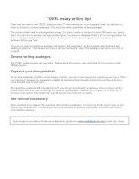 TOEFL essay writing tips
