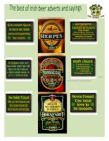 29102 best irish beer adverts and sayings