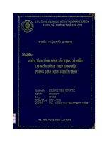 Phân tích tình hình tín dụng cá nhân tại ngân hàng TMCP Nam Việt PGĐ Nguyễn Trãi