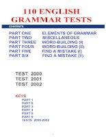 110 english grammar tests