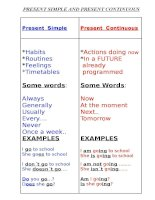 Present  simple present continous differences forms examples