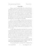 ĐỒ án kỹ THUẬT nắn ẢNH vệ TINH để THÀNH lập BÌNH đồ tỷ lệ 1 trên 50