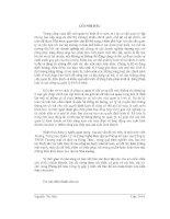 BÁO cáo THỰC tập tại CÔNG TY TNHH THƯƠNG mại và DỊCH vụ HÙNG THẢO